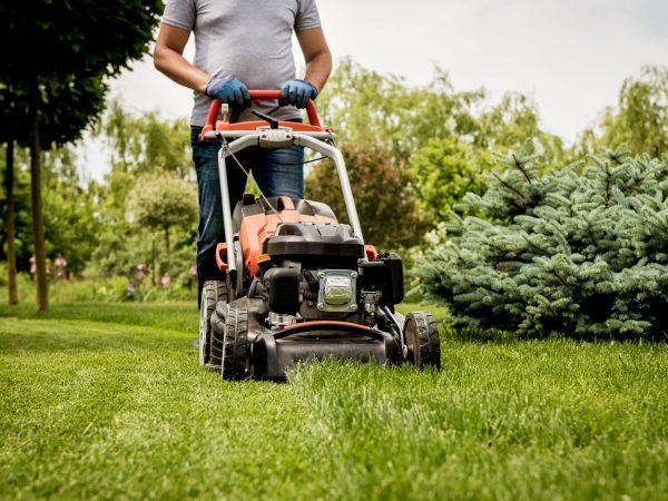Gardener mowing the lawn. Landscape design. Gardening